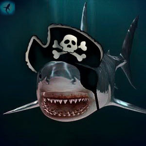 Все об акулах